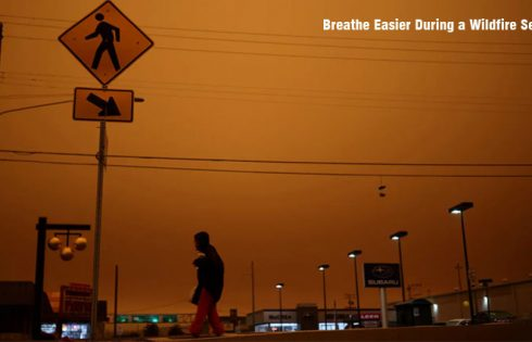 Breathe Easier During a Wildfire Season